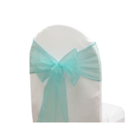 Noeud de chaise organza Turquoise - NSE Location  0,50€