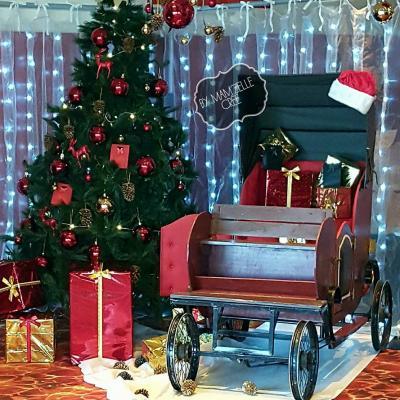 Déco et illuminations pour Noël
