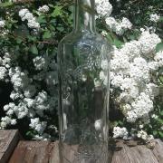 Location bouteille déco vigne - 0.80€