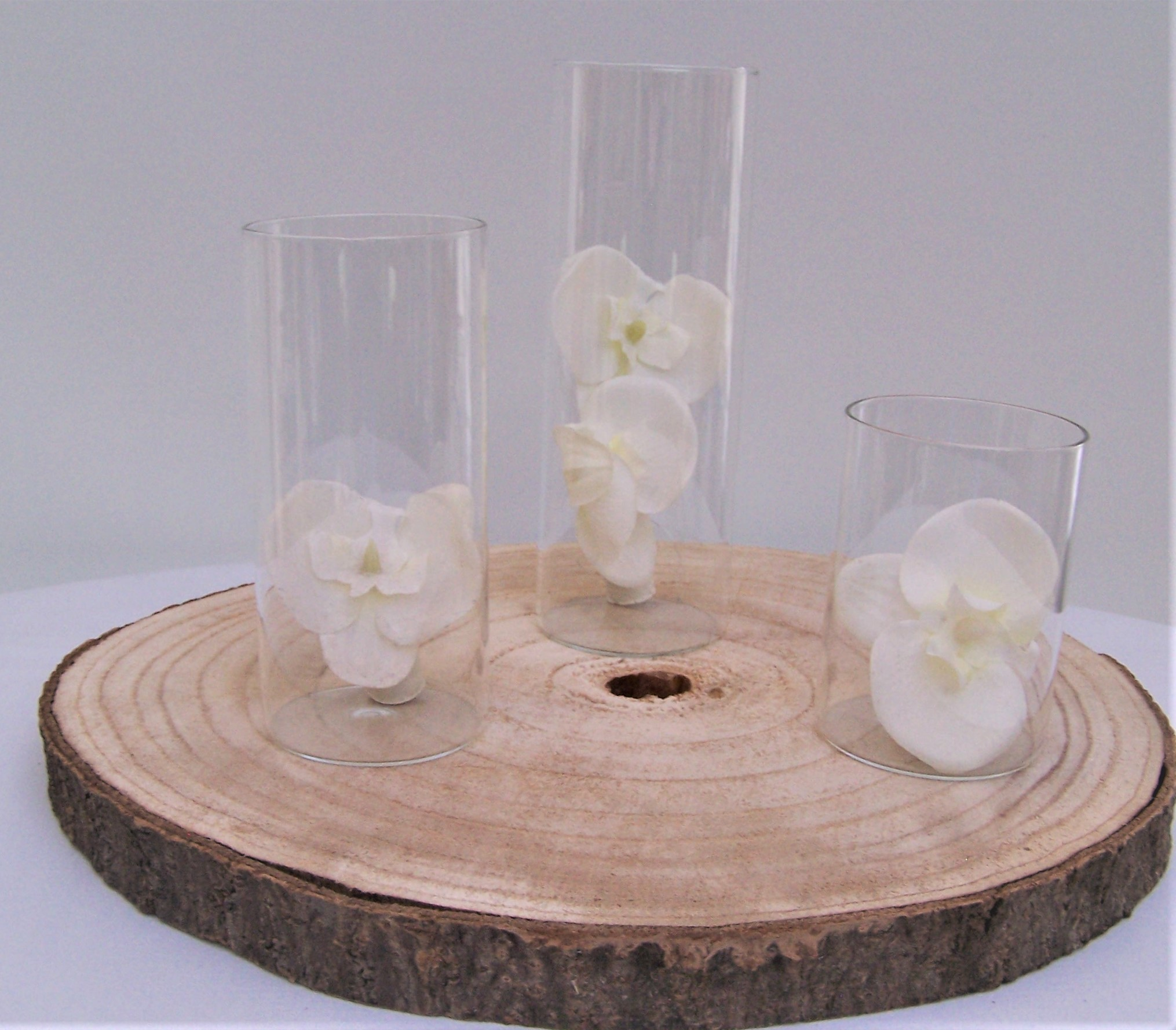 Location vase cylindre H10-15-20cm