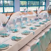Organza turquoise et plume d'autruche