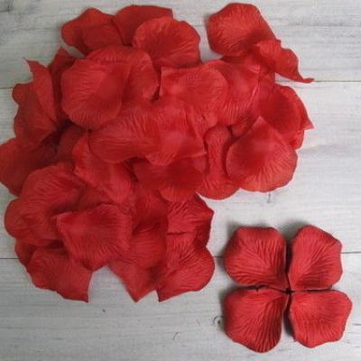Pétales de roses rouge NSE 4.20€