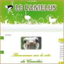 Le Camelus