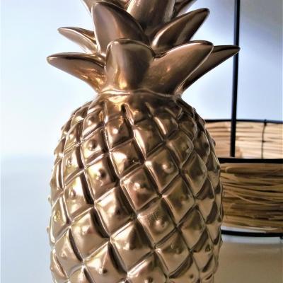Location ananas deco tropical