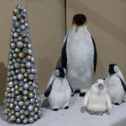 Location pingouins